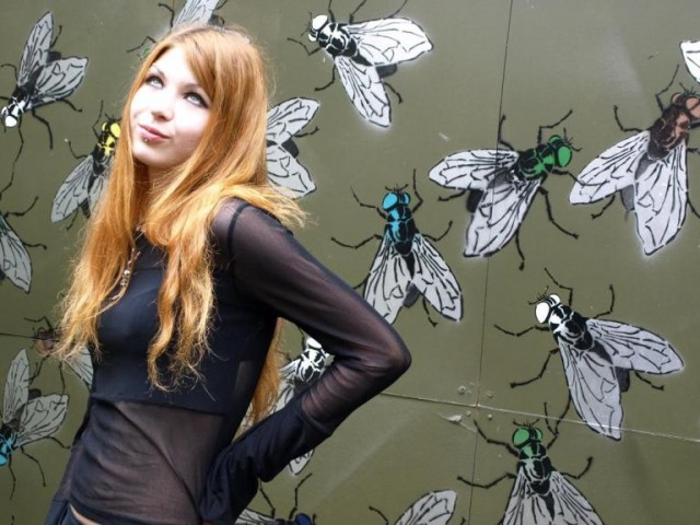 Like Flies